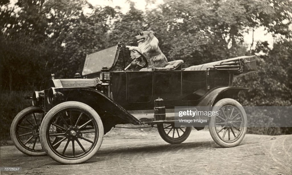 Image shows a dog named King as he wears driving goggles and sits in the driveru0027s. RF. Antique Car Ford T 1925 & Model T Ford Stock Photos and Pictures   Getty Images markmcfarlin.com