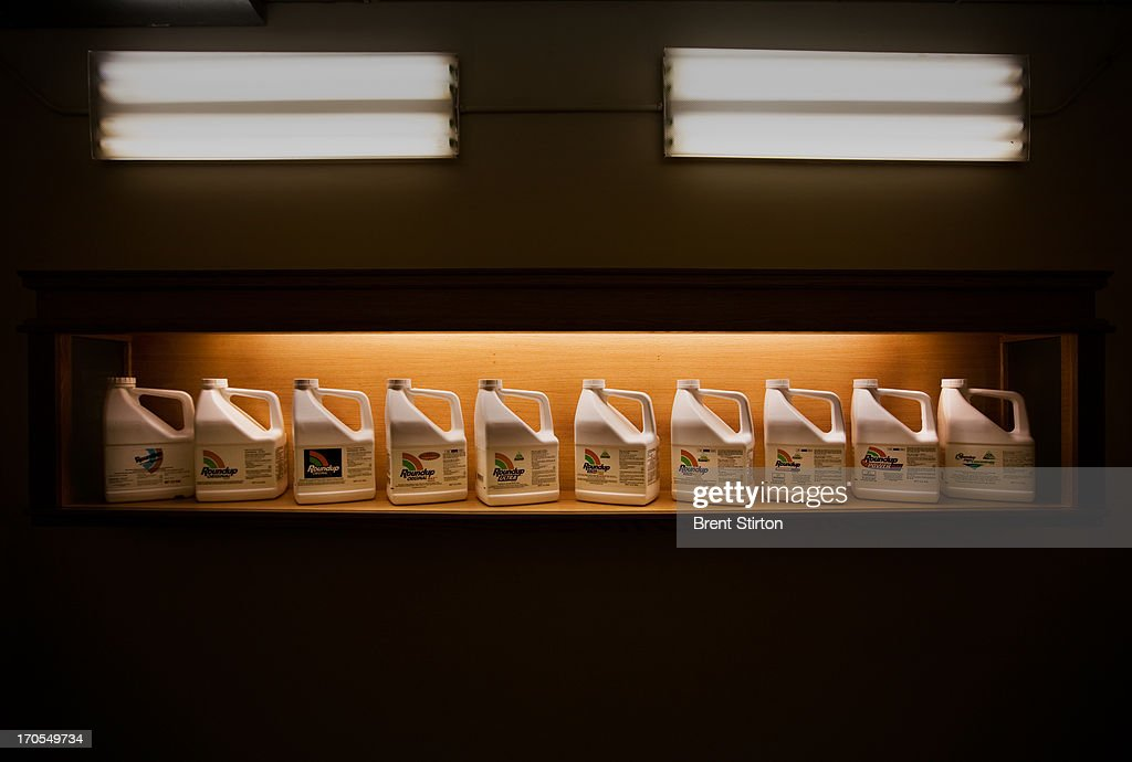 Images of a display of 'Round-up,' the herbicide which made Monsanto a succesful force in the agribusiness inside Monsanto headquarters in St Louis, Missouri, 21 May 2009. Monsanto is at the forefront of biotechnology in the agribusiness sector and these images are of a machine which is used to test new doseages of Round Up herbicide on weed seedlings. Monsanto is a controversial global corporate with a history of strong litigation against those it assumes are interfering with its stringent patent laws. This practise as well as its advanced genetically modified technolgy in the agricultural sector have led many to be suspicious of Monsanto and the ultimate good of GM foods. Monsanto argues back that sufficent food production for the future is simply not possible without adequate GM technology in agriculture.