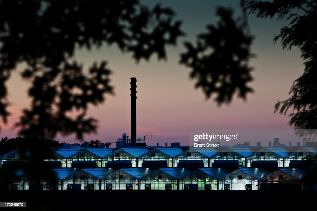 Images of Monsanto agribusiness greenhouses on top of a research building in St Louis, Missouri, 21 May 2009. Monsanto is at the forefront of biotechnology in the agribusiness sector and these greenhouses are housing the corn, soy bean and cotton of the future. All the plants in the Greenhouses have been carefully selected and cross-bred for their elite DNA qualities and are being grown as the crop of the future. It is estimated that these plants will produce seeds which are likely to see actual agricultural production in five to eight years time.