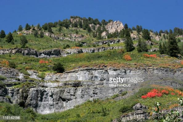 Images of nature in the high mountains of Provo UT in United States on September 04 2006