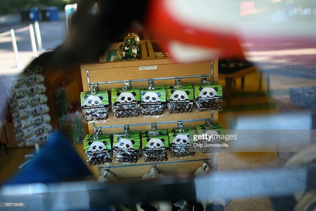 Images of the Smithsonian National Zoological Park's giant pandas is displayed in a gift shop the day after the death of a six-day-old panda cub at the zoo September 24, 2012 in Washington, DC. Officials at the zoo released preliminary results from a necropsy peformed on the 6-day-old, 4-ounce female cub that died at the zoo yesterday.