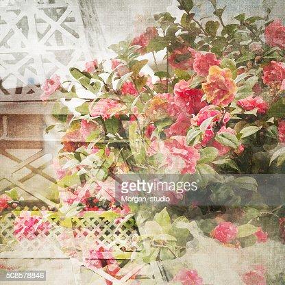 Imitation d'aquarelle fond : Photo