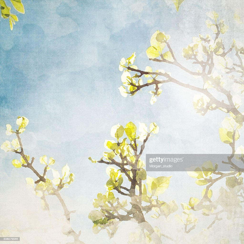 Imitation of the watercolor painting background : Stock Photo