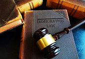 Immigration Law book with court gavel