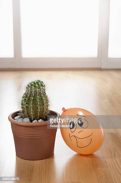 Impossible love between cactus and balloon, Bavaria, Germany