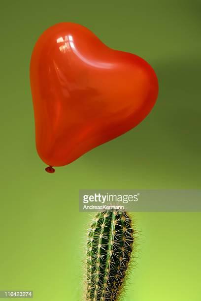 Unmöglich Liebe zwischen den Kakteen und Ballons