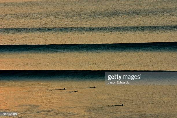 Surfers await beautiful clean sunset waves as they roll in over a reef