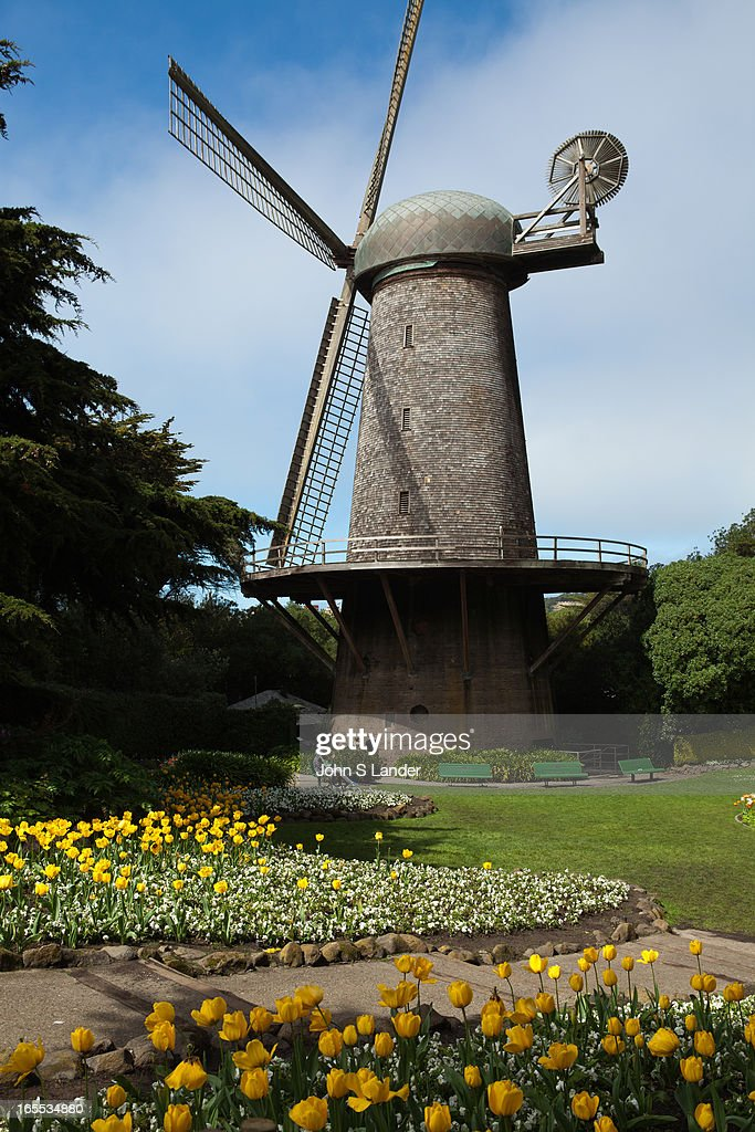 In 1902, the Golden Gate Park saw the completion of the Dutch Windmill - also referred to the 'North Windmill'. As time passed, the windmill was given a motorized pump since it no longer needed the wind to facilitate its function. In 1980 the exterior of the structure received repairs also the time that the Queen Wilhelmina Tulip Garden was created on the neighboring grounds..