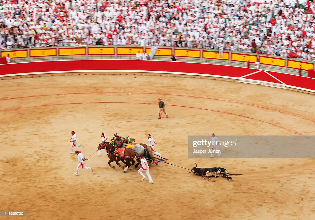 A in a bullfight killed El Pilar fighting bull is pulled out of the bull ring by horses on the fourth day of the San Fermin running-of-the-bulls on July 10, 2012 in Pamplona, Spain.