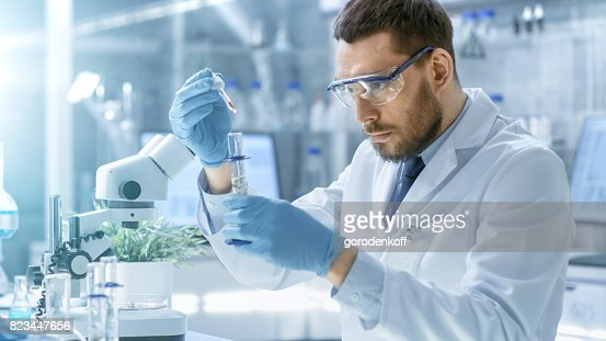 In a Modern Laboratory Scientist Conducts Experiments by Synthesising Compounds with use of Dropper and Plant in a Test Tube. : Foto de stock