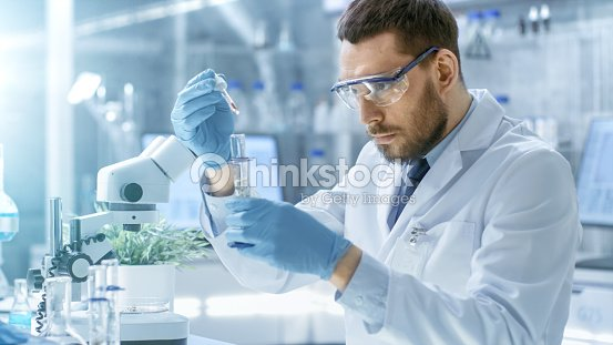 In a Modern Laboratory Scientist Conducts Experiments by Synthesising Compounds with use of Dropper and Plant in a Test Tube. : Stock Photo