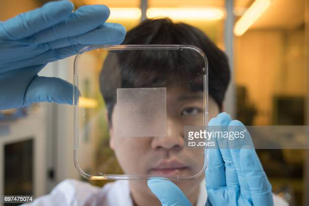 In a photo taken on June 16 2017 postgraduate chemical engineering student Baik SangYul holds a strip of ahesive inspired by octopus suction cups at...