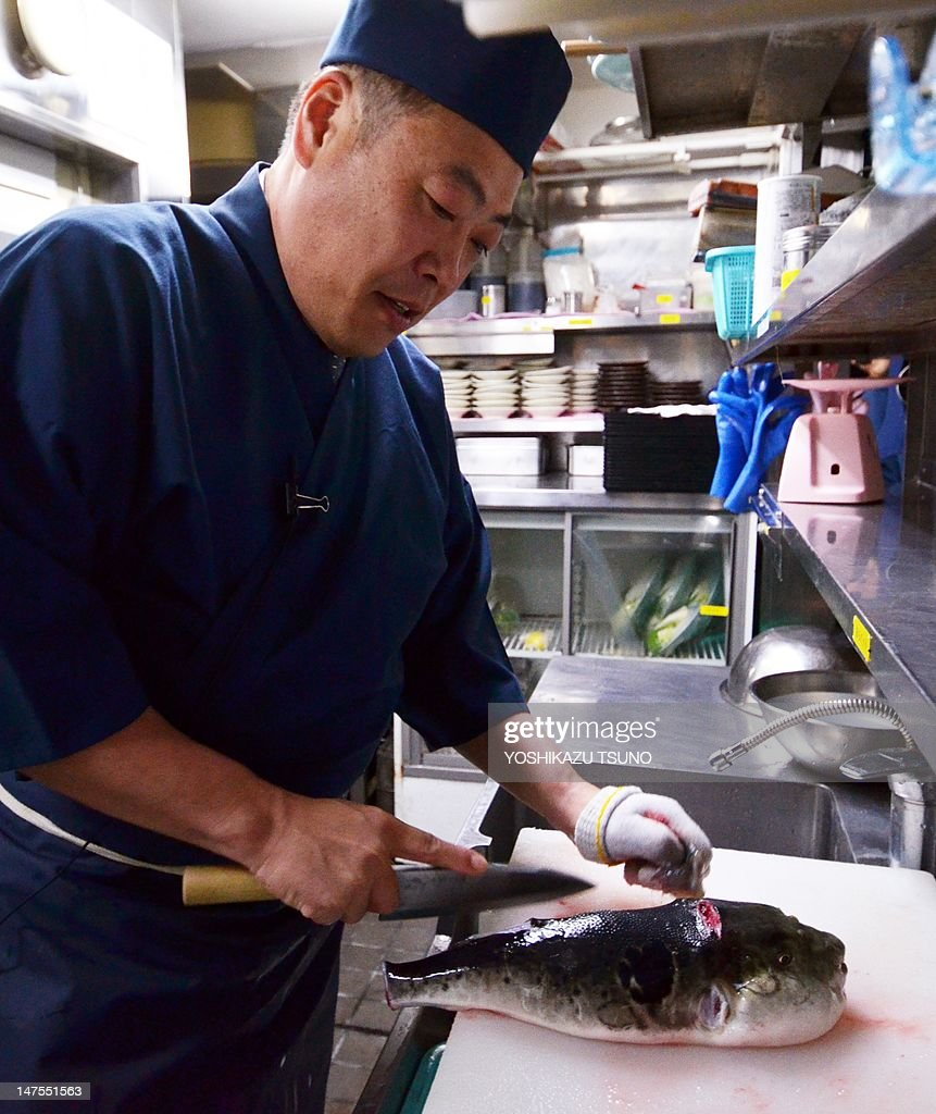 In a picture taken on June 5 Japanese chef Shigekazu Suzuki cuts and trims a pufferfish known as fugu in Japan to remove toxic internal organs at his...