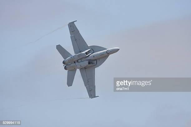 F/A-18 In Flight