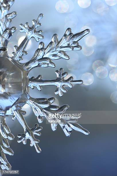 In focus photo of a snow crystal