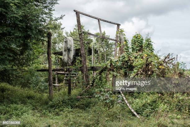 In Kbal Romeas village the remnants of homes belonging to families who took the compensation are destroyed by the jungle Local communities refuse to...