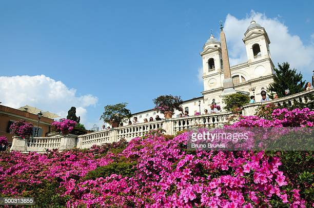 CONTENT] In May every year the Spanish Steps in Rome are filled with flowers