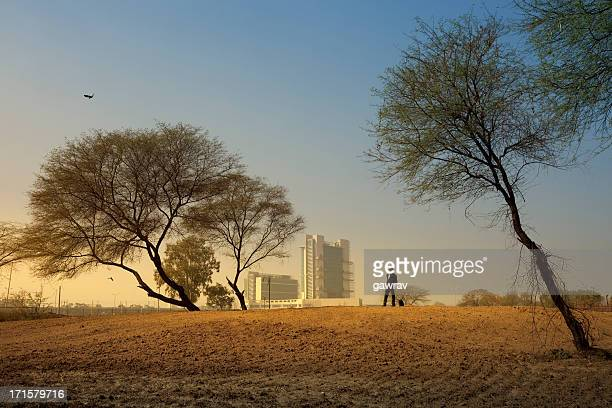In morning landscape a businessman standing alone between trees