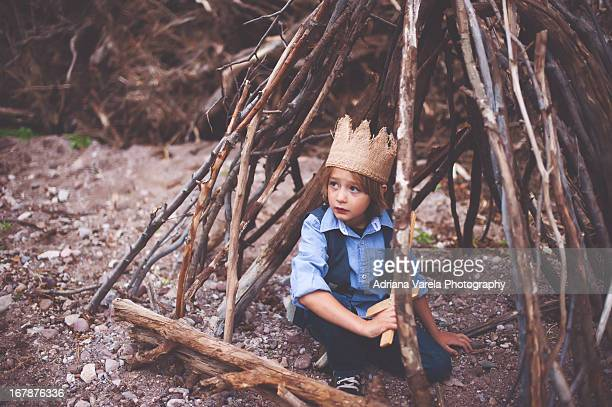 In my fort of sticks