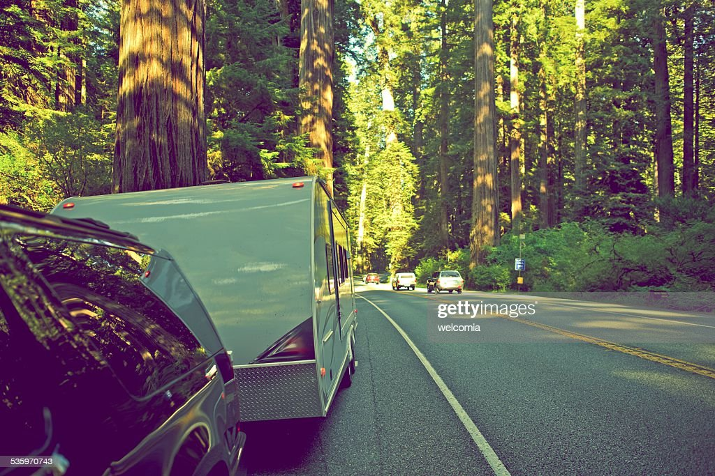 RV in Redwood Forest : Stock Photo