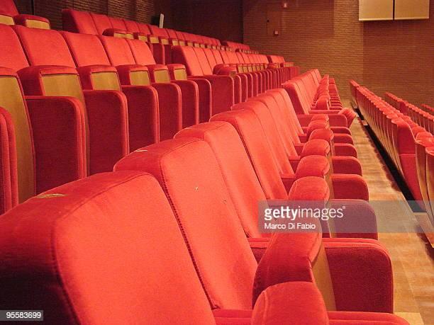 In the Auditorium