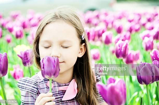 Im Bereich der Tulpen