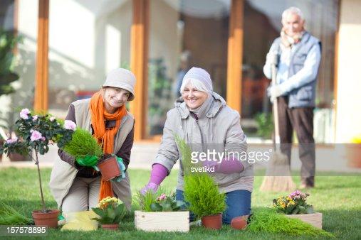 In the garden. : Stock Photo