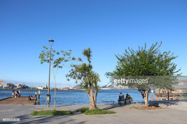 In the heart of Rio Guanabara Bay offers the perfect landscape for a break among the city's bustle Early fall in Rio de Janeiro Brazil is marked by a...