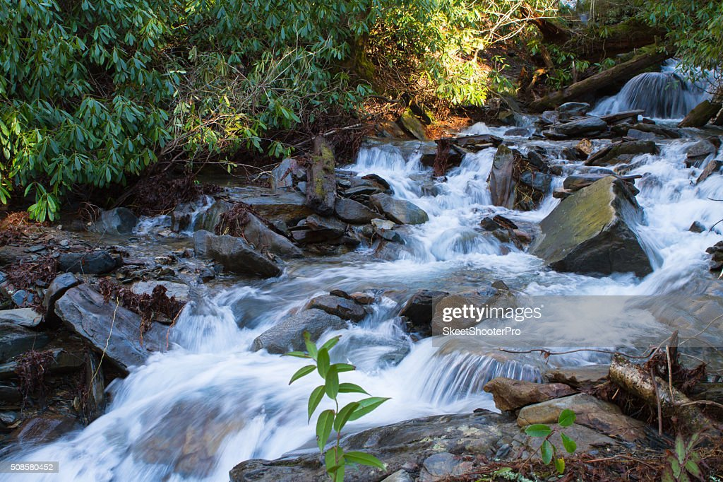 In The Mountain's River : Stockfoto