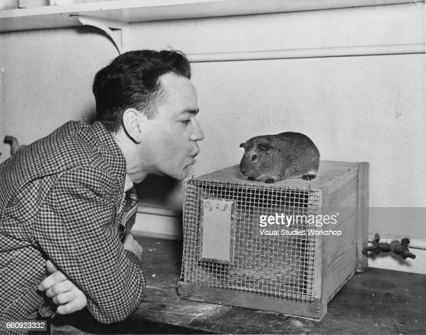 In the nutrition department at Fordham University a young man whistles at a guinea pig perched atop a crate New York New York 1920s or 1930s