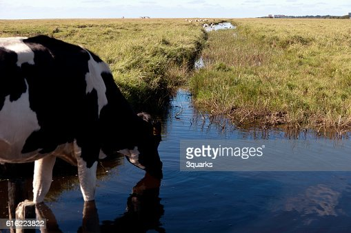 In the thurm cap of St. Peter-Ording in Germany : Foto stock