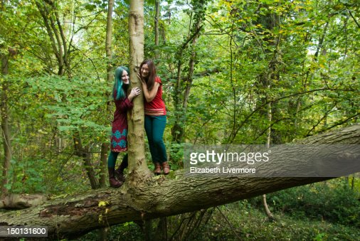 In the woods : Stock Photo
