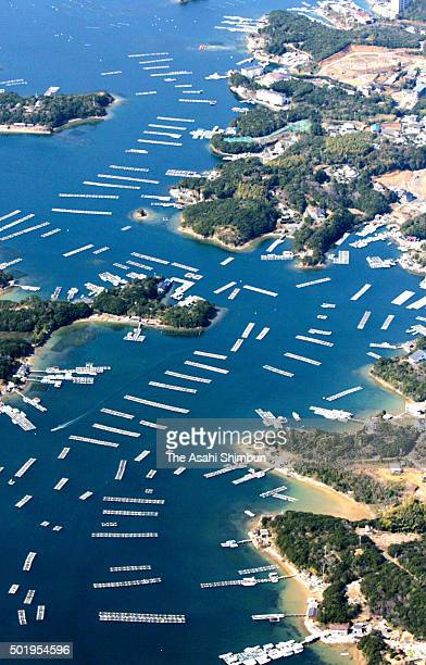 In this aerial image rafts for pearl farming are seen on the sea at Ago bay on March 11 2006 in Shima Mie Japan