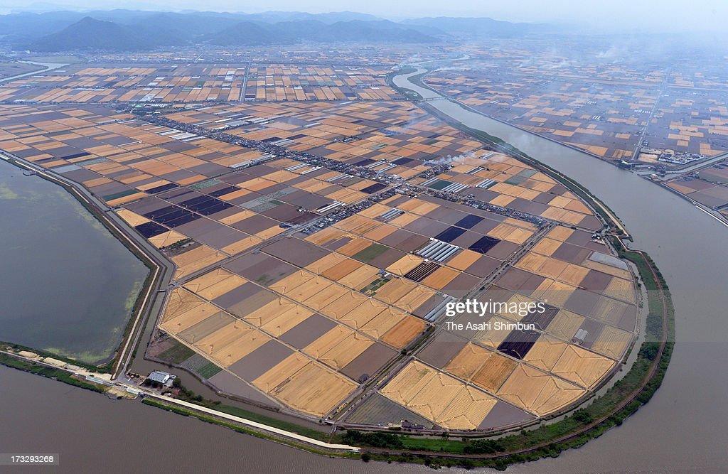 In this aerial image, wheat field at Kojima Bay is seen on June 6, 2013 in Okayama, Japan.