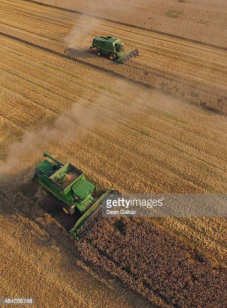 In this aerial view combines harvest summer wheat at a cooperative farm on August 14 2015 near Grossderschau Germany The German Farmers' Association...