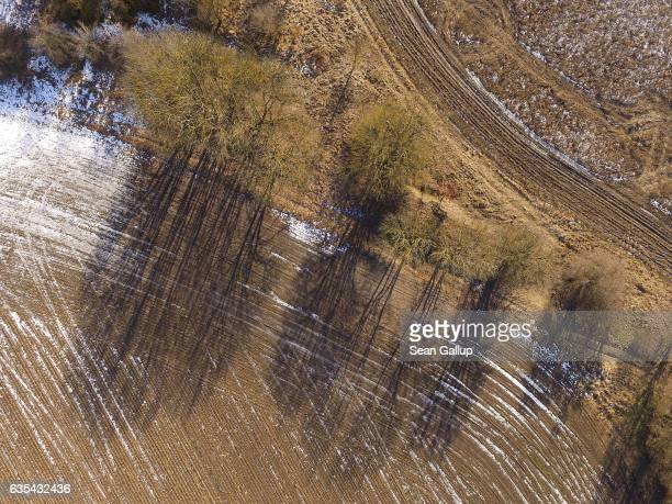 In this aerial view trees cast shadows across a farmer's field as melting snow recedes on February 15 2017 near Herzfelde Germany Temperatures across...
