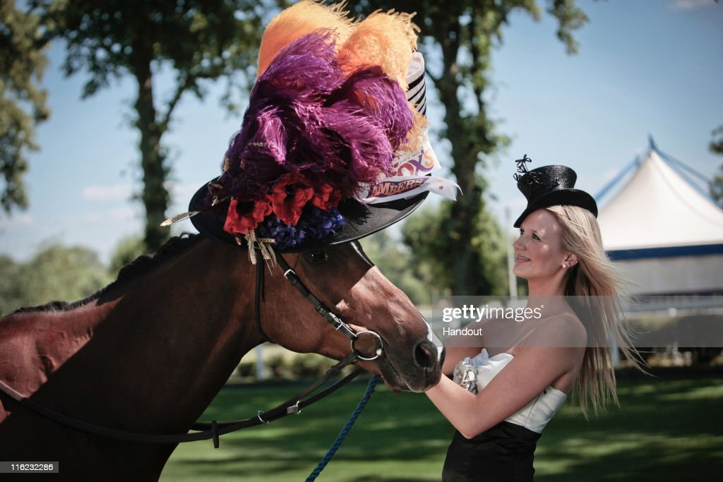 In this handout image provided by Cow PR, Ambers, a racehorse owned by Fox's Biscuits, is pictured wearing the world's first ever Ladies' Day hat for a horse alongside racegoer Elizabeth Beswick on June 14, 2011 in Ascot, England. Milliner, Stephen Jones has today created the first-ever hat for a horse to celebrate the 300th anniversary of Royal Ascot and its Ladies' Day tradition of extravagant headwear. The unique piece of horse couture has been commissioned by Fox's Biscuits to be elegantly worn by the biscuit manufacturer's own fine filly, Ambers - a racehorse named after the new biscuit range, Fox's Ambers. The hat represents Stephen Jones's first foray into filly fashion; whose designs are typically tailored for a who's who of the world's most famous Stars, including royalty. The revered fashion designer is also the official milliner for Royal Ascot in its tercentenary year. The horse's hat draws its inspiration from the timeless Ladies' Day headpiece made famous by Audrey Hepburn in the film My Fair Lady. With floral flourishes and lavender and amber feathers adding flashes of colour alongside luxurious satin, it is the epitome of equine elegance. From concept to construction, the hat took more than 30 hours of masterful millinery to complete and is valued at over £8,000. Commenting on the design, Stephen Jones said: 'For three centuries Royal Ascot has been home to some of the world's finest horses and finest hats. But until now, nobody had ever created hats for the other important ladies of the day: the female racehorses. When I was approached to create a hat for a horse, it brought a smile to my face and seemed like a fun and unique way to celebrate 300 years of the world's most famous racing event.