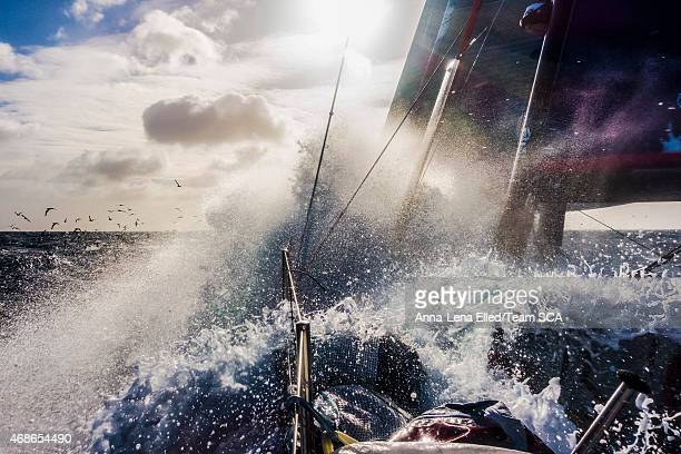 In this handout image provided by the Volvo Ocean Race Leg 5 to Itajai onboard Team SCA Day 17 Birds and showers Nature The Volvo Ocean Race 201415...