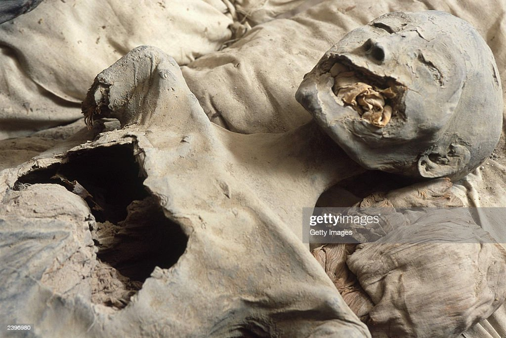 In this handout photo from the Discovery Channel the mummy believed to be Nefertiti is shown in a side chamber royal tomb KV35 in the Valley of the...