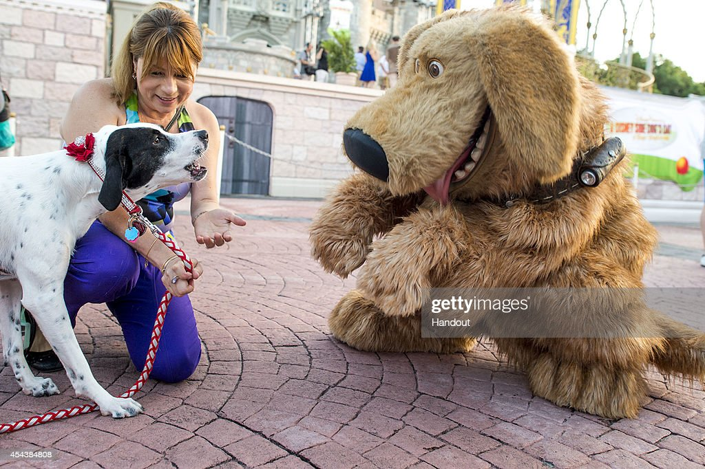 In this handout photo provided by Disney Parks Mejay Aguerre and her dog 'Lily' meet the DisneyPixar canine character 'Dug' at the Magic Kingdom at...