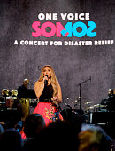 One Voice: Somos Live! A Concert For Disaster Relief -...