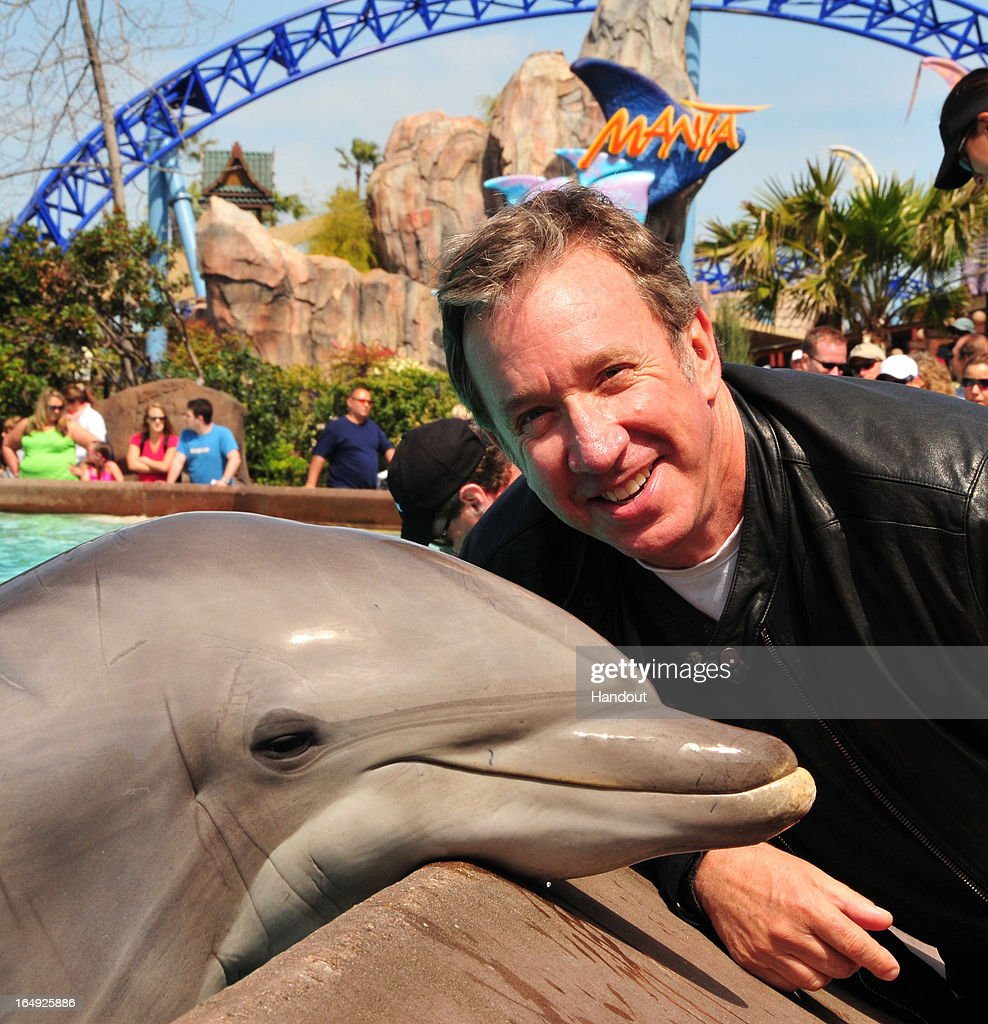 In this handout photo provided by SeaWorld San Diego, actor and comedian <a gi-track='captionPersonalityLinkClicked' href=/galleries/search?phrase=Tim+Allen&family=editorial&specificpeople=206248 ng-click='$event.stopPropagation()'>Tim Allen</a> meets Cometta, an Atlantic bottlenose dolphin, at SeaWorld San Diego's Dolphin Point March 28, 2013 in San Diego, California. The star of the hit TV sitcom 'Last Man Standing' visited the marine park with his family where they also met Humboldt penguins, beluga whales and sea turtles during their behind-the-scenes tour.