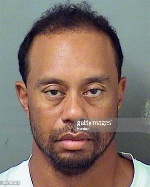 In this handout photo provided by The Palm Beach County Sheriff's Office golfer Tiger Woods is seen in a police booking photo after his arrest on...