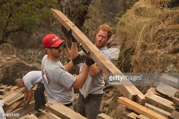 In this handout provided by Team Rubicon UK Prince Harry and Mark Laws from the USA clear wood for the solar farm site as they help Team Rubicon UK...