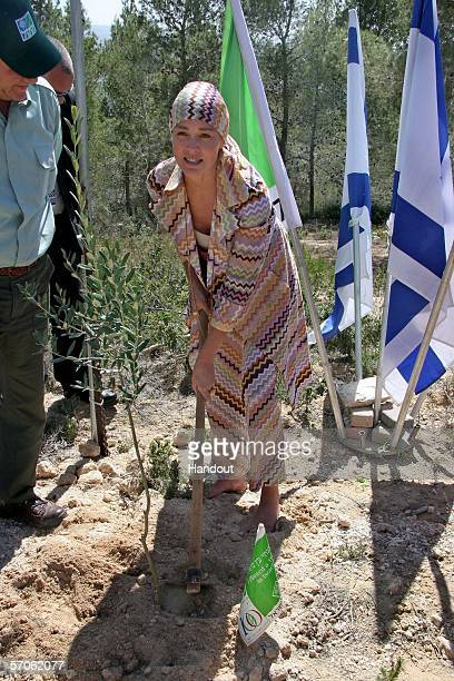 In this handout provided by the Peres Center for Peace actress Sharon Stone plants a tree in a Jewish National Fund forest March 12 2006 on the...