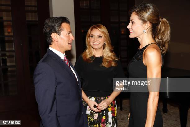 In this handout provided by the Spanish Royal house President of Mexico Enrique Pena Nieto meets Queen Letizia of Spain at 'Los Pinos' residence on...