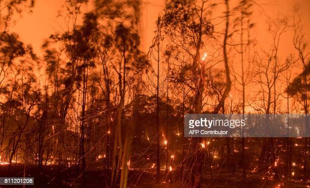 TOPSHOT In this long exposure photograph embers fly off smouldering trees after flames from the 'Wall fire' tore through a residential neighborhood...
