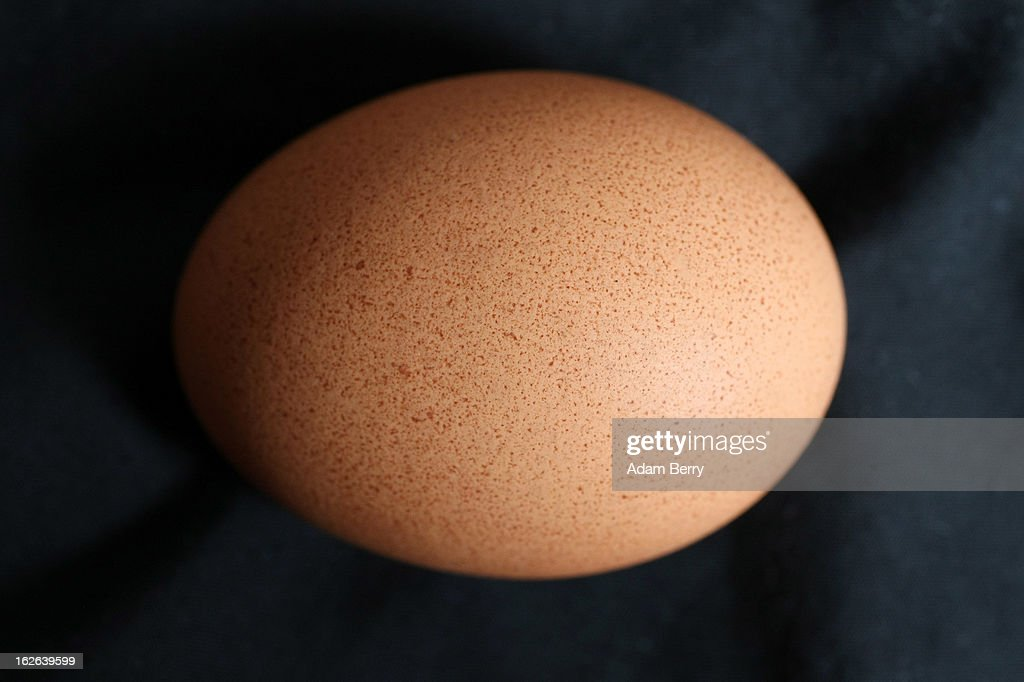 In this photo illustration, an egg sold as organic is seen on February 25, 2013 in Berlin, Germany. According to a report, hundreds of egg-providing companies in the country are inaccurately describing their products as organic ('bio' in German), a mislabeling due to the producers exceeding the permitted maximum number of chickens allowed to be kept in their cages at one time to be able to receive the official certification.