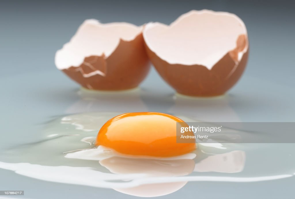 In this photo illustration an egg yolk and its shell are pictured on January 5 2011 in Berlin Germany German authorities across the country are on...