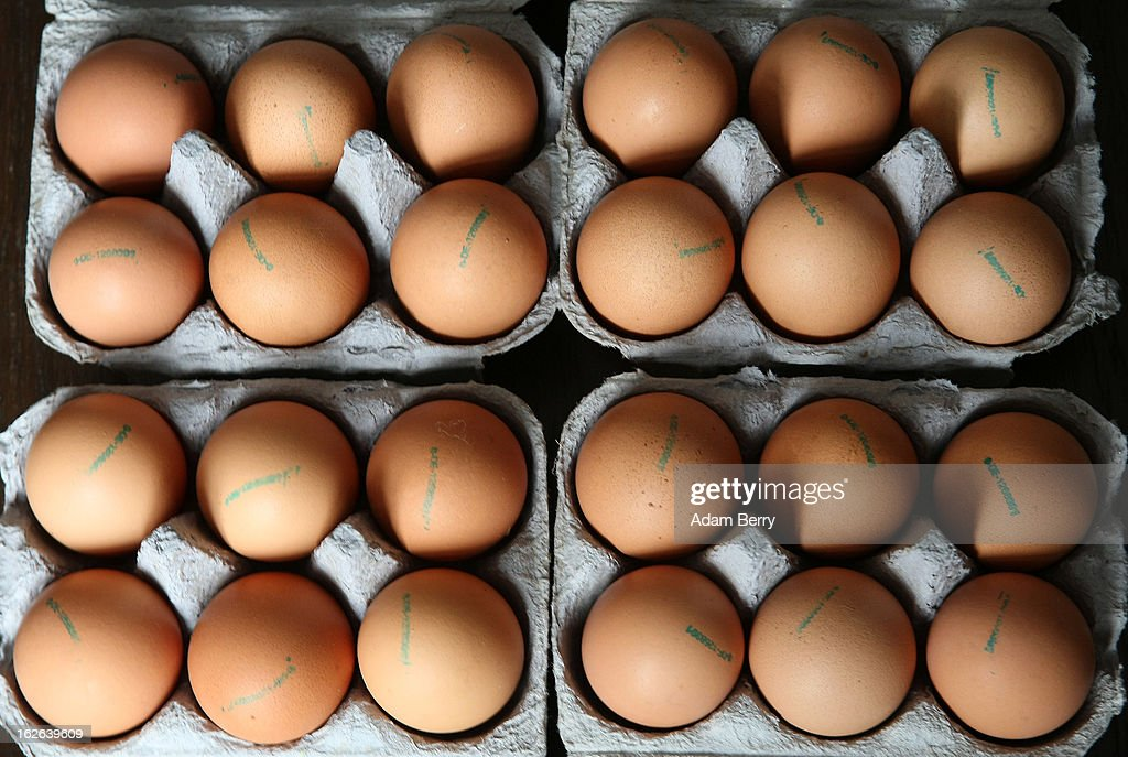 In this photo illustration, eggs sold as organic are seen in their cartons on February 25, 2013 in Berlin, Germany. According to a report, hundreds of egg-providing companies in the country are inaccurately describing their products as organic ('bio' in German), a mislabeling due to the producers exceeding the permitted maximum number of chickens allowed to be kept in their cages at one time to be able to receive the official certification.